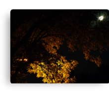 Full Moon and Street Light Canvas Print