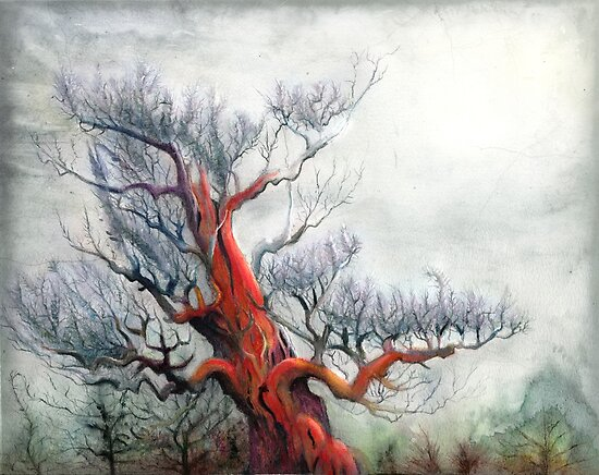Red Pine II by Bjorn Eek