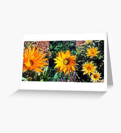 'Spring has Sprung'  Greeting Card