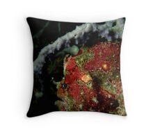 A Rare Red Throw Pillow