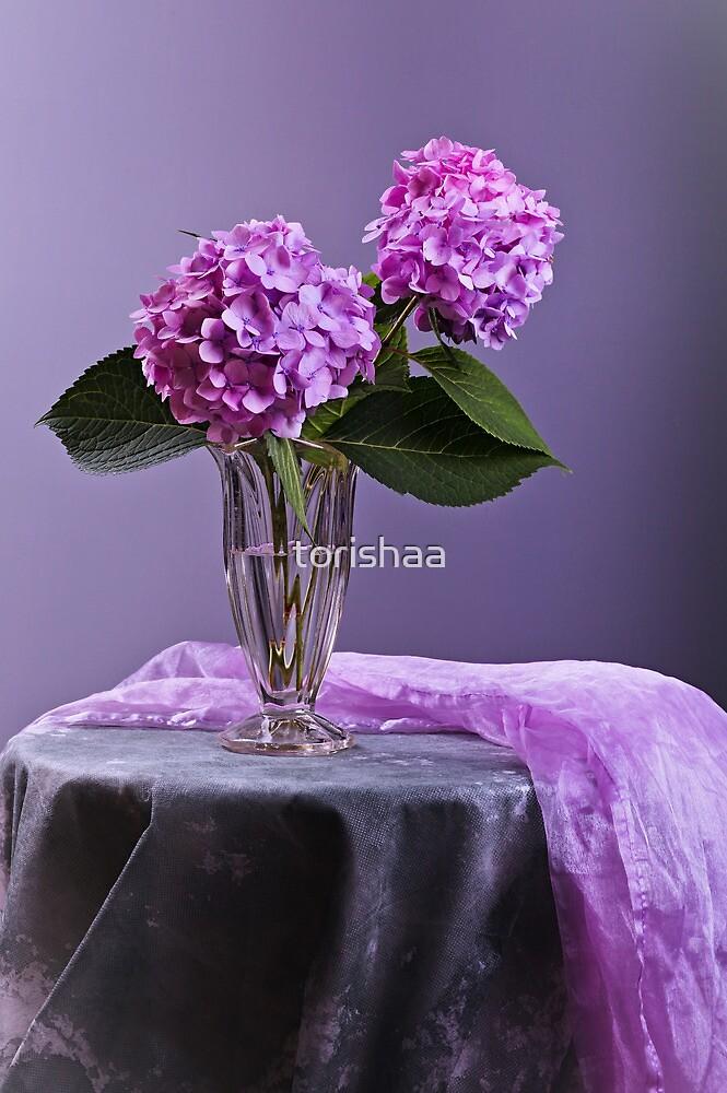 Hortensia flowers in glass vase  by torishaa