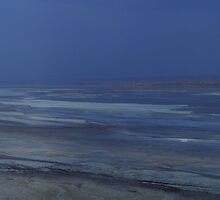 Magadi lake, Kenia by Konstantin Zhuravlev