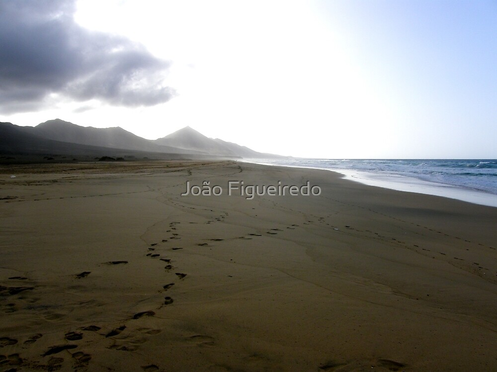 The black beach of Jandia by João Figueiredo