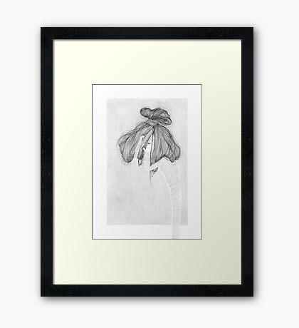 Explora Framed Print