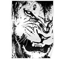 B&W Lion Poster