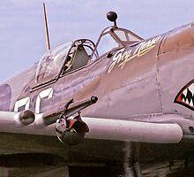 RAAF Supermarine Spitfire by Anthony Woolley