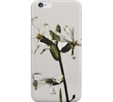 Drinking at the Flower Bar iPhone Case/Skin