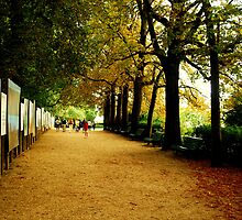Parc du Thabor, Rennes by amrita125