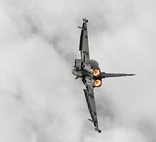 Eurofighter Typhoon by William Rottenburg