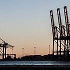 Cargo Crane Sunset by William Rottenburg