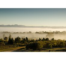 Morning Fog at Mudgee Homestead Guesthouse - Mudgee Photographic Print
