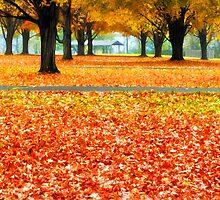 Autumn in the Park by KellyHeaton