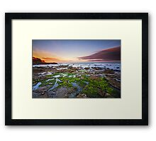 Frozen in Time - Curio Bay, South Island, New Zealand Framed Print