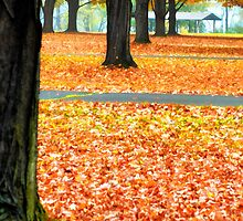 Autumn in the Park, Verticle by KellyHeaton