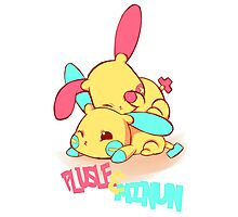 Plusle & Minun Photographic Print