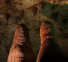 Subterranean Gemini by William C. Gladish