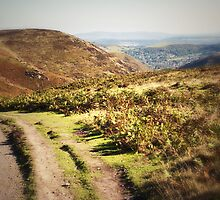 Church Stretton (Lomography) by Joel Stone