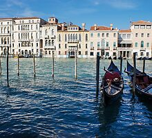Venice, Italy - Traditional Venetian Gondolas on the Grand Canal by Georgia Mizuleva