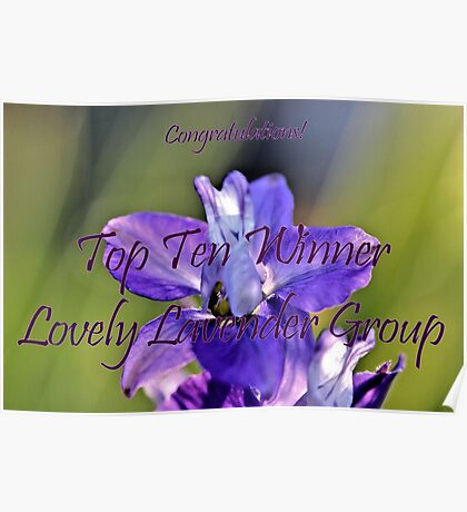 Banner - Lovely Lavender Top Ten Winner Poster
