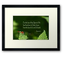 The Law that Frees ~ Romans 8:2 Framed Print