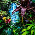 plants by chrisfb1