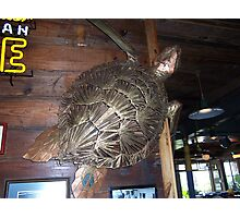 Metal Art - Turtle in Fisherman's Whorf in Galveston Texas Photographic Print