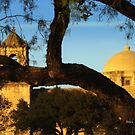 Spanish Mission, through the Trees by Shiva77
