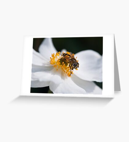 Rich pickings Greeting Card