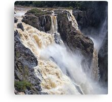 Thundering water over the falls Canvas Print