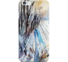 Winter Sun at the Forest iPhone Case/Skin