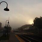 A foggy morning at the Berwyn, IL train station by Adam Kuehl