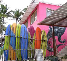 Surfboards. by Anne Scantlebury