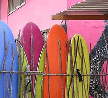 Surfboard fence. by Anne Scantlebury