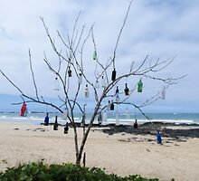 Bottle tree. by Anne Scantlebury