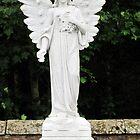 Angel  by Forfarlass