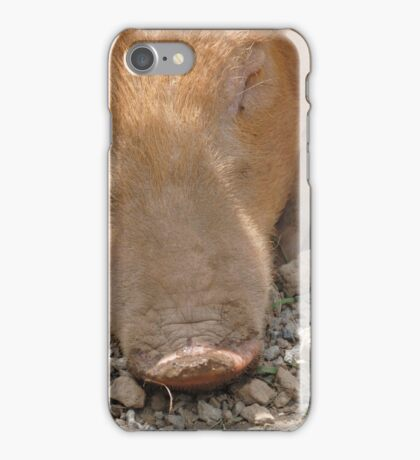 Miss Piggy! iPhone Case/Skin