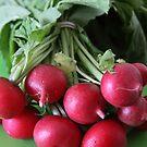 Fresh from the Farmers' Market (Radishes) by Jillian Jones