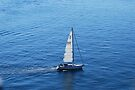 Sail Away by Tori Snow