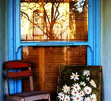 Better keep yourself clean and bright; you are the window through which you must see the world.  by Norma  Ledesma