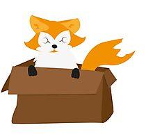 I WANT A FOX Photographic Print