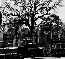 Cemetery by Amped