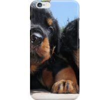 Two Rottweiler Puppies, High Five iPhone Case/Skin