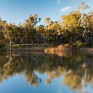 Reflections of the Edward River by Elizabeth Tunstall