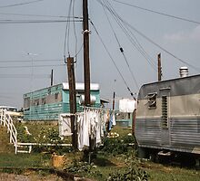 Linden Trailer Camp  195707280012 by Fred Mitchell