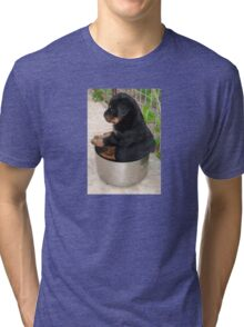 Rottweiler Puppy Sitting In A Bowl Of Food Tri-blend T-Shirt