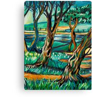 Park View In Blue Canvas Print