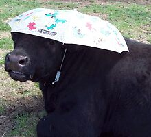 Ready for Rain by JobieMom