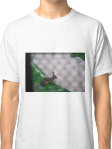 Rabbit through the fence Classic T-Shirt