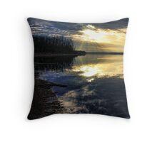 Slippery Shoreline Throw Pillow