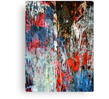 Uncontained V Canvas Print